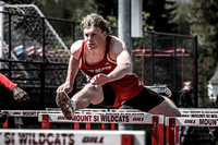2014 Mt Si Track Invitational