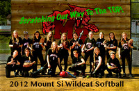 2012 MSHS Softball Team Photos
